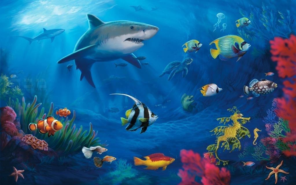 Подводный мир морей и океанов