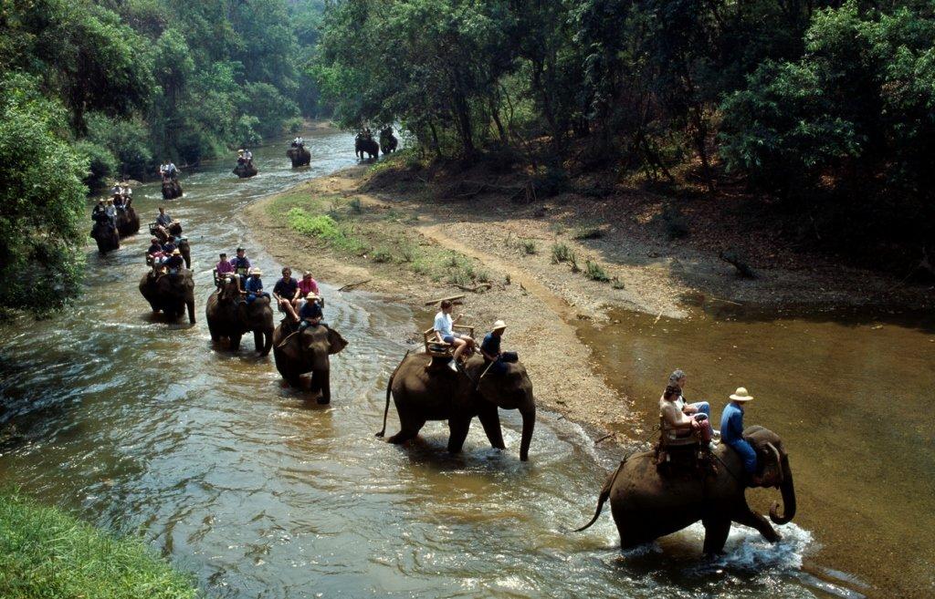 Прогулка на слонах, Тайланд
