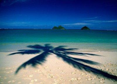 Куда ехать отдыхать на море? Интересные места и отзывы