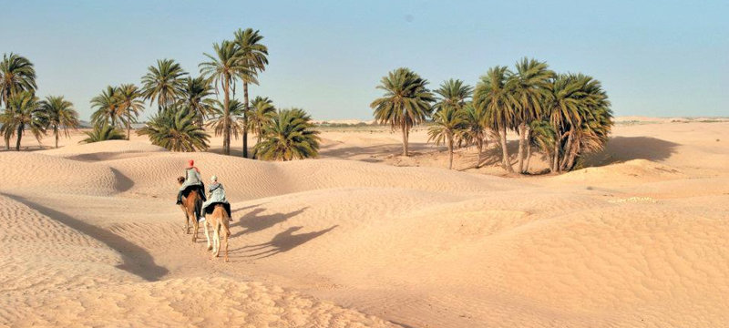 климат Туниса